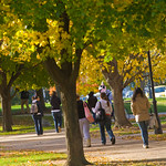 tour-0012 -- The Illinois Wesleyan campus is an arboretum with more than 1,000 trees in nearly 100 different species.
