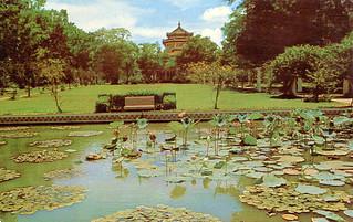 Saigon - Botanical Gardens (Postcard)