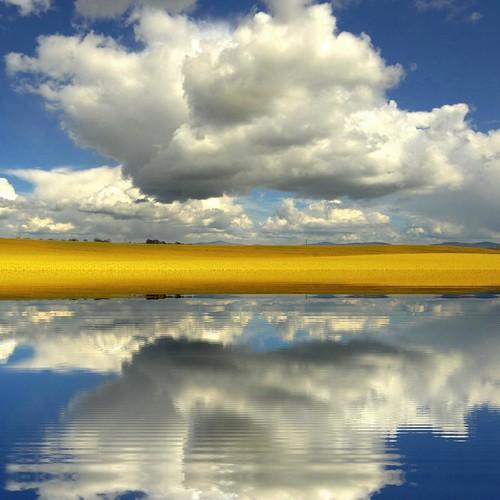 clouds sky water reflection rapeseed canola kilkenny ireland ierland irlanda irlande irlandia irish agriculture photoart eire eireann farming landscape nature me2youphotographylevel1