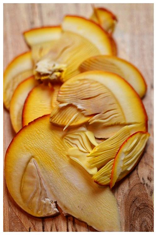 Ovolo Mushroom© by Haalo