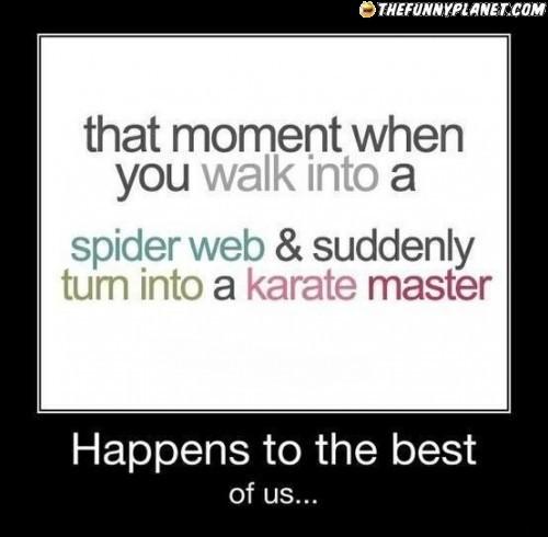 spider web karate