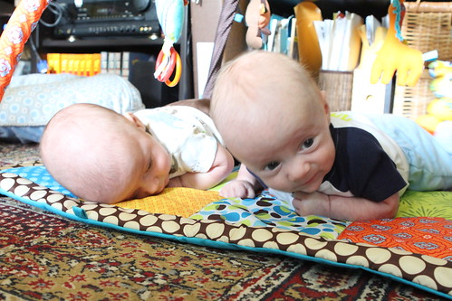 The Wombats at Tummy Time