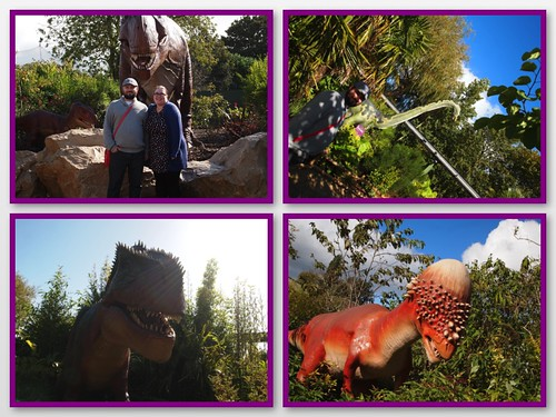 chester zoo 6