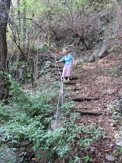 Path to Darzo