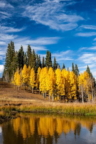 autumn trees sky reflection tree fall water clouds colorado aspen steamboatsprings rabbitearspass
