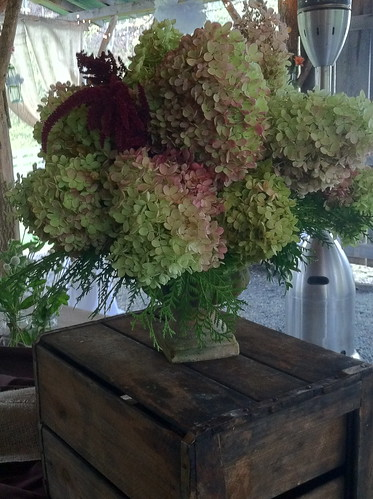 simple hydrangea urn by Shady Grove Gardens