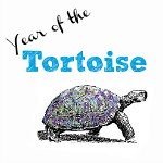 Year of the Tortoise