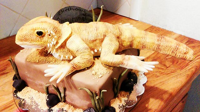 Bearded Dragon Cake by Anna Bunting of YAY CAKE
