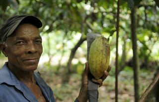 DR.cacao plantation worker.Solidarity Center.20-15. Solidarity Center&Ricardo Rojas (1)