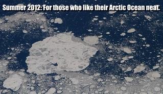 ArcticSeaIce_4568