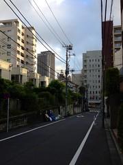 朝散歩 (2012/8/31)
