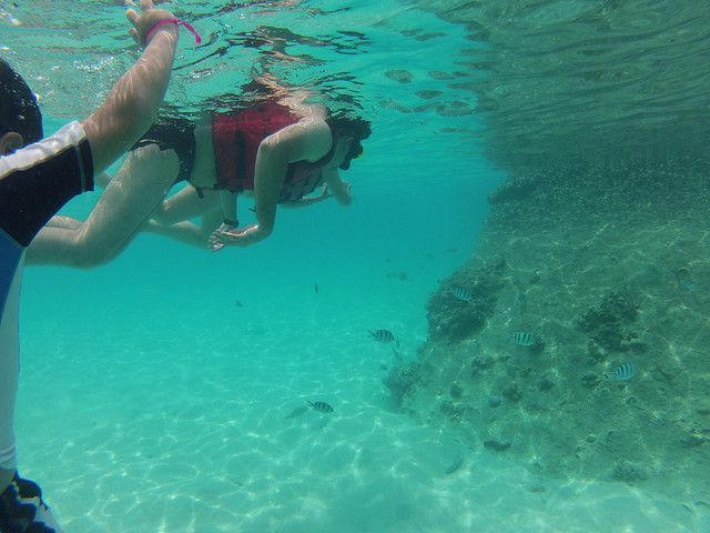 Koh Tao & Nang Yuan snorkeling Tour