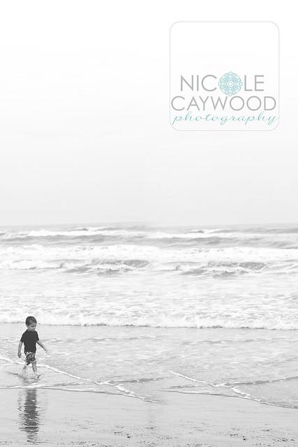 beach_88bw