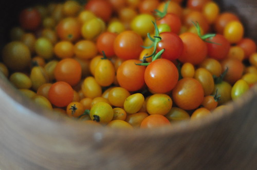 the most wonderful tiny tomatoes, the size of peas, that we discovered at the CSA
