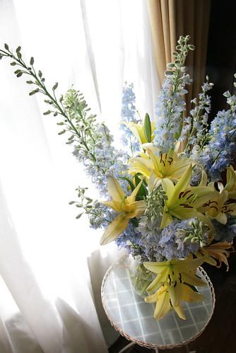 Window Flowers by peterkelly
