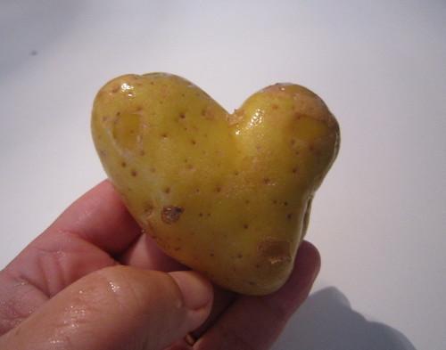 ♥♥♥ Amor de batata para o jantar... by sweetfelt \ ideias em feltro