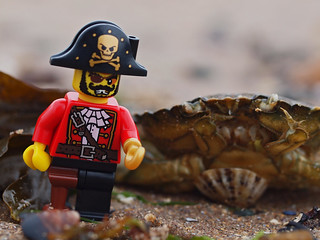 hoist the jolly roger mr crab, there be looting to be done!