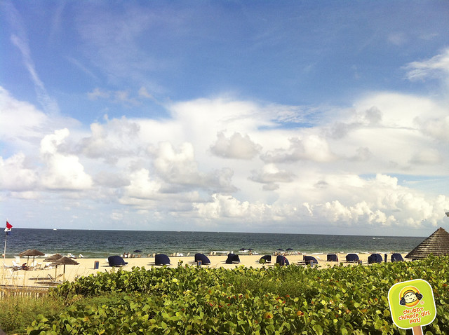 ft lauderdale - marriott harbor beach resort & spa