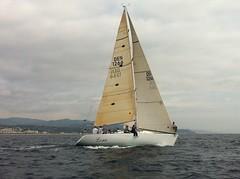 yacht racing, sail, sailboat, sailing, sailboat racing, vehicle, sailing, ship, windsports, mast, watercraft, scow, dinghy sailing, boat,