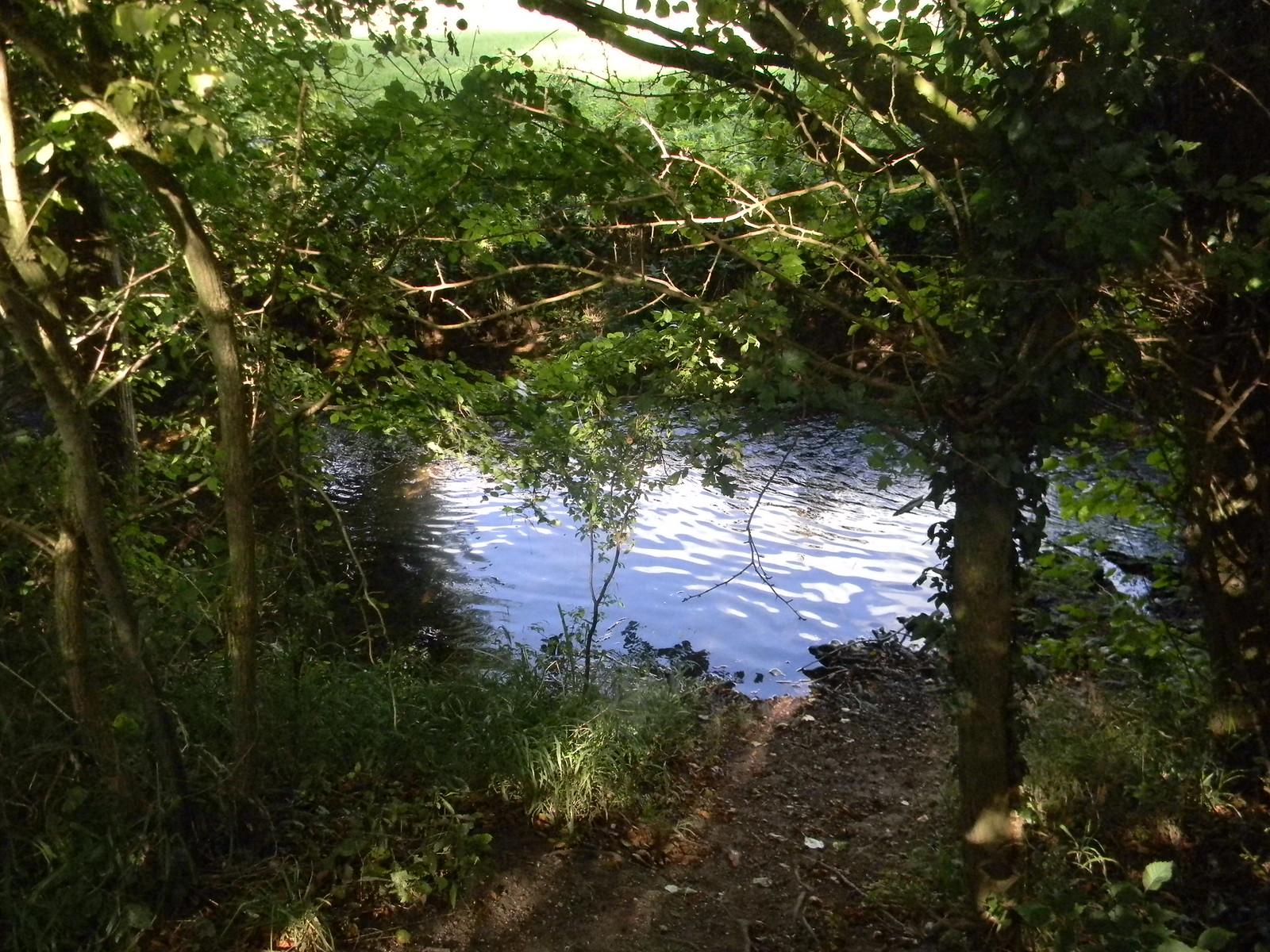 The Ash Roydon to Sawbridgeworth