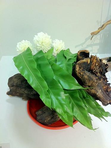 Ikebana Photos