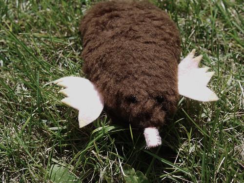 Guac, a mole