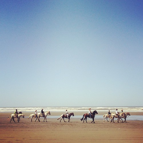 Perfect day for a horse ride on the beach.