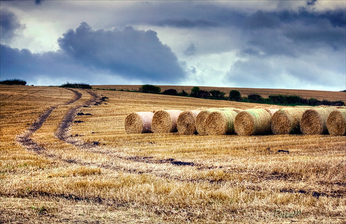 red england sky field yellow clouds landscape countryside scenery straw bale 2012 canon75300 codurham canoneos60d