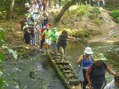 Encontro Río Ouro e Praias de Foz 2012
