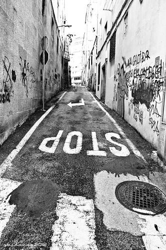 329/365 Camiño dos anxos by sairacaz