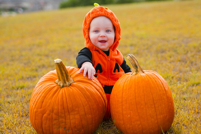 Baby Pumpkin-011
