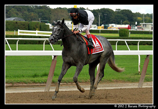 The Lumber Guy after winning The 73rd Running of The Vosbugh Invitational (Grade I)