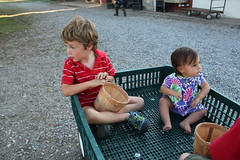 Three kids in a wagon 6