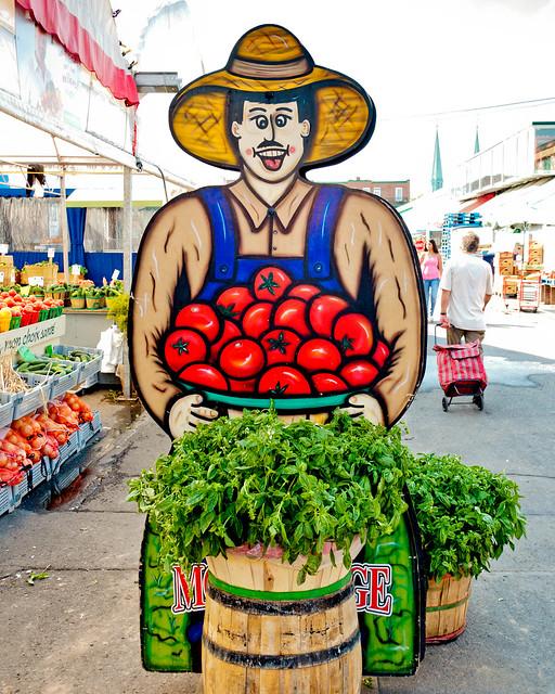 Tomato Farmer