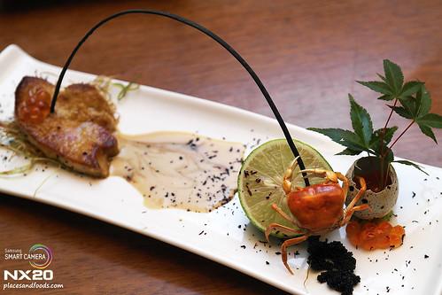 sagano migf 2012 foie gras