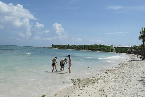Beach by feliks kogan