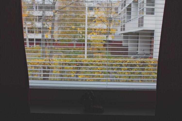 ikkunasta