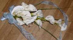 *susan..m.. t/d( christina is bride) a brides trailing calla lilie bouquet with gems,bear grasses and pale blue ribbon