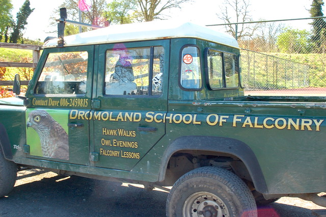 Dromoland_Falconry1