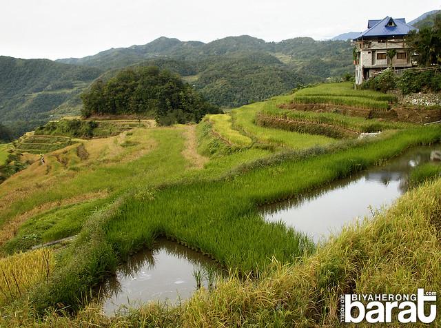 Sitio Liwang Banaue Ifugao