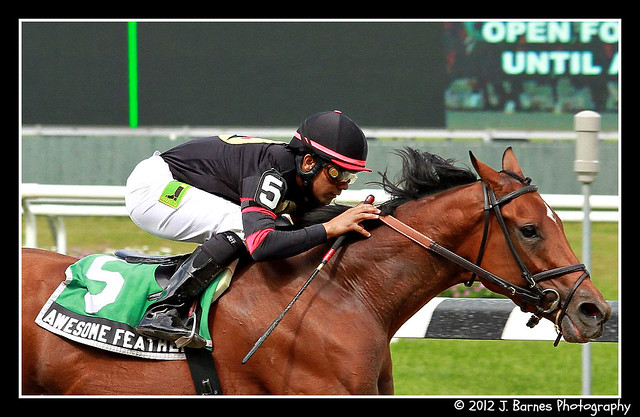 Awesome Feather Makes it 10 For 10 and wins $85,000 The Nasty Storm Stakes (2)