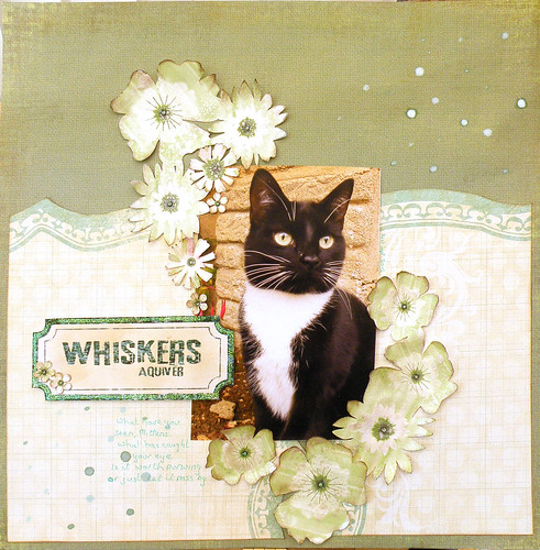 Whiskers aquiver