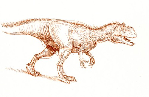 allosaur sketch