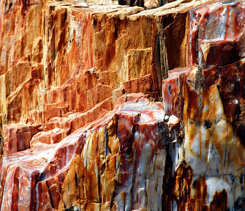 Greece, Island of Lesvos, a trip to the petrified forest, 036