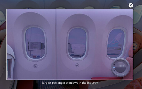 Lan 787 Window Controls