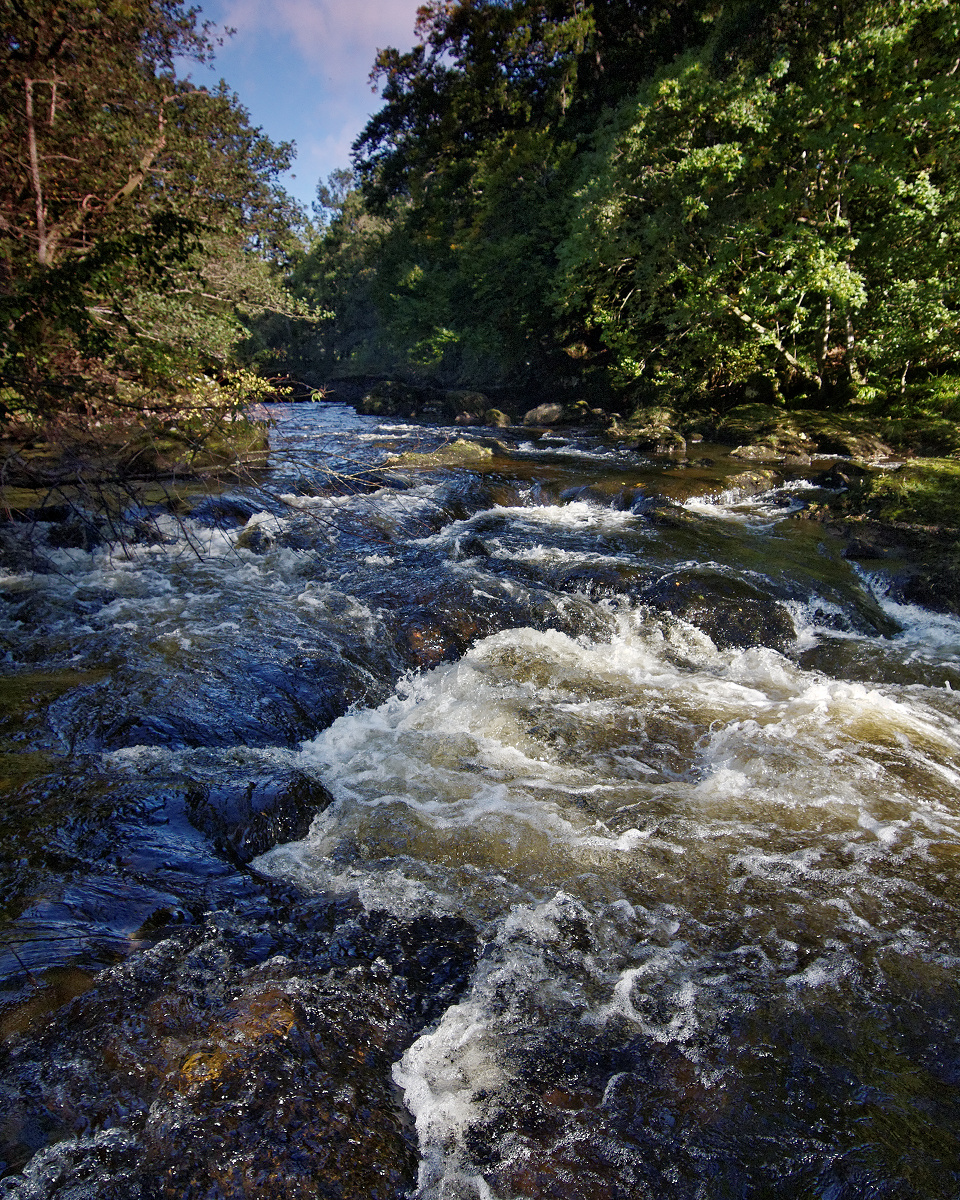 The River Almond at Buchanty