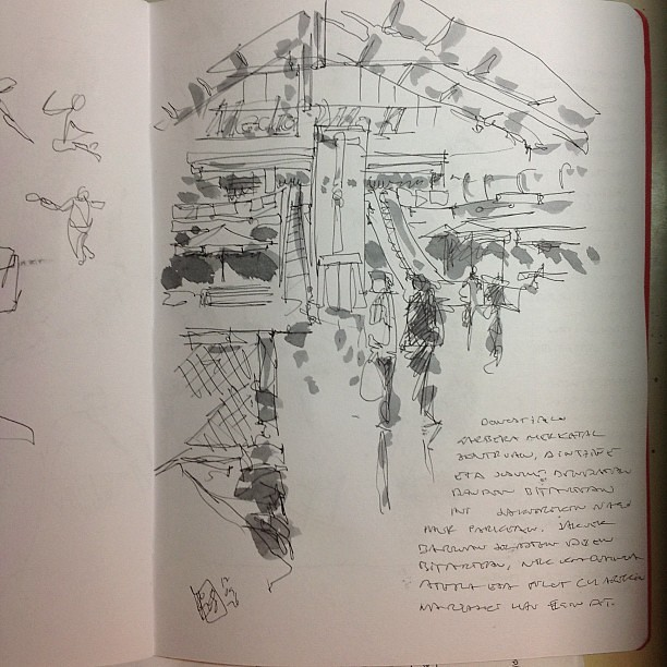 Garbera, sketch