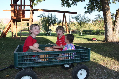 Three kids in a wagon 4