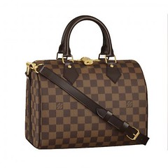 Louis Vuitton Speedy 25 With Shoulder Strap N41181