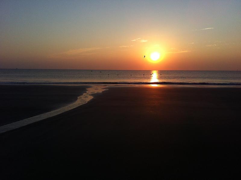 Last Vacation Sunrise